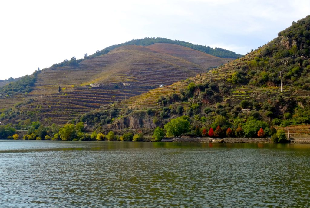 Douro-Tal: Blick aus dem Boot