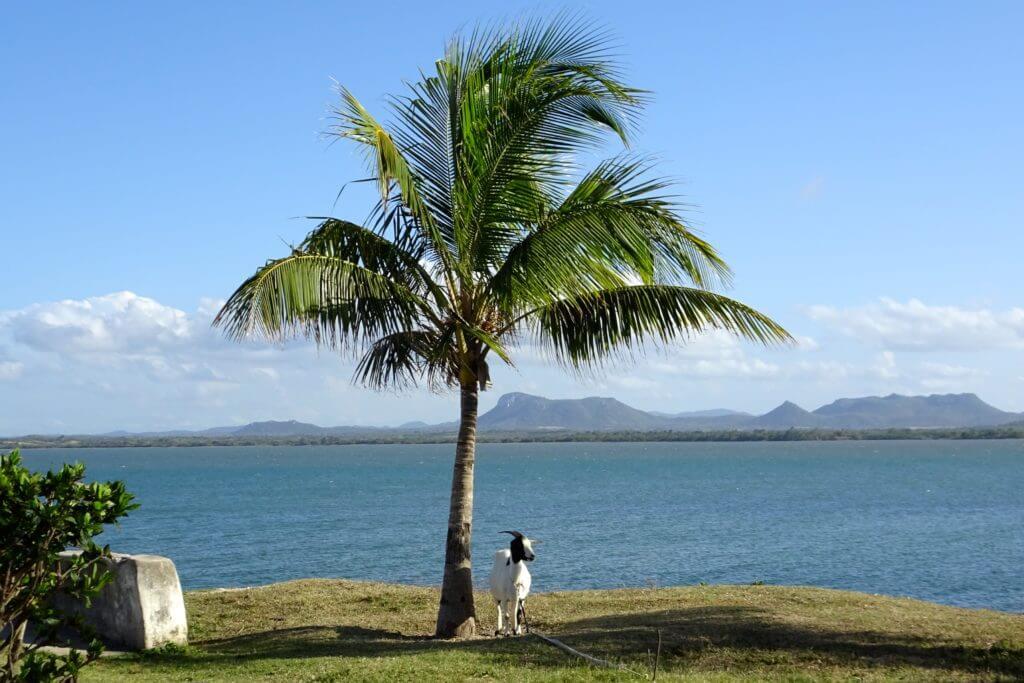 Küstenimpressionen vor Gibara, Kuba