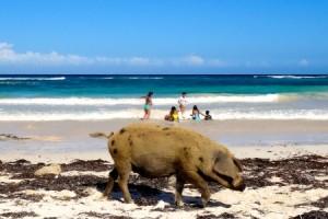 Gibara: High Heels und Schweinebraten