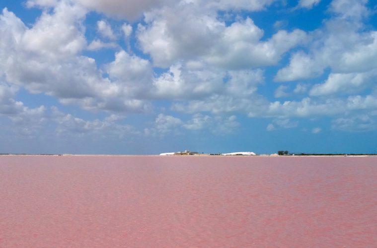 Las Coloradas, Yucatán. Pinkfarbenes Wasser eines dortigen Sees.