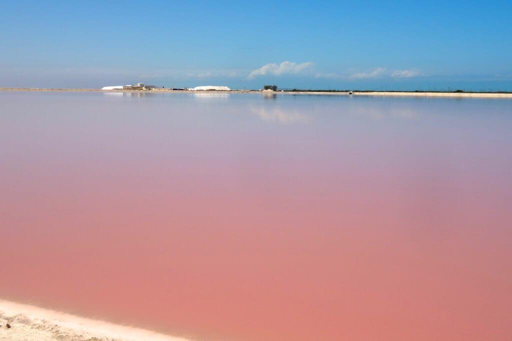 Jahresrückblick Reiseblog Groovy Planet, pinkfarbenes Wasser in Las Coloradas, Mexiko