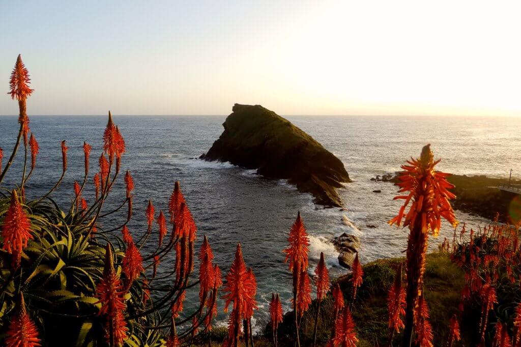 An der Küste von São Miguel. Blick auf das Meer.