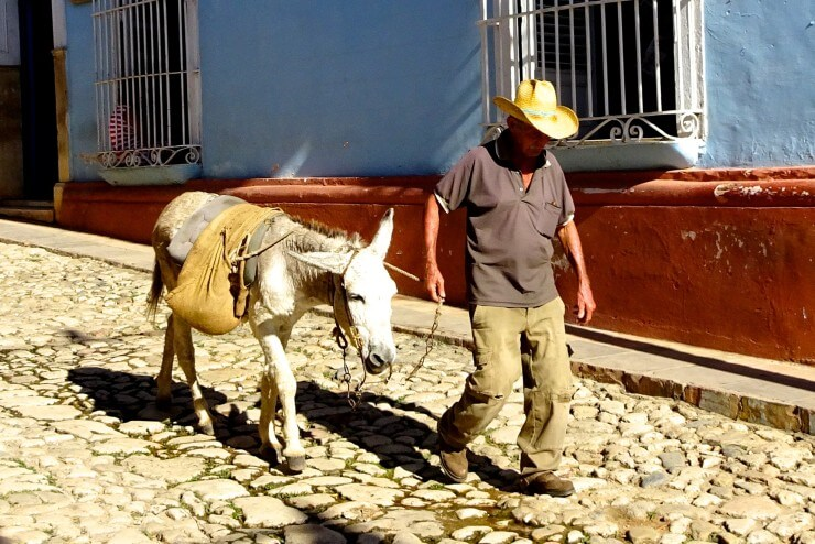 Trinidad in Kuba, Mann mit Esel