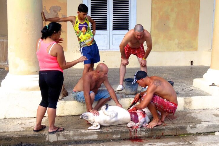 Gibara Kuba, Silvestervorbereitung