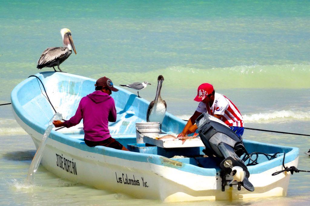 Fischer bei der Arbeit in Las Coloradas, Mexiko.