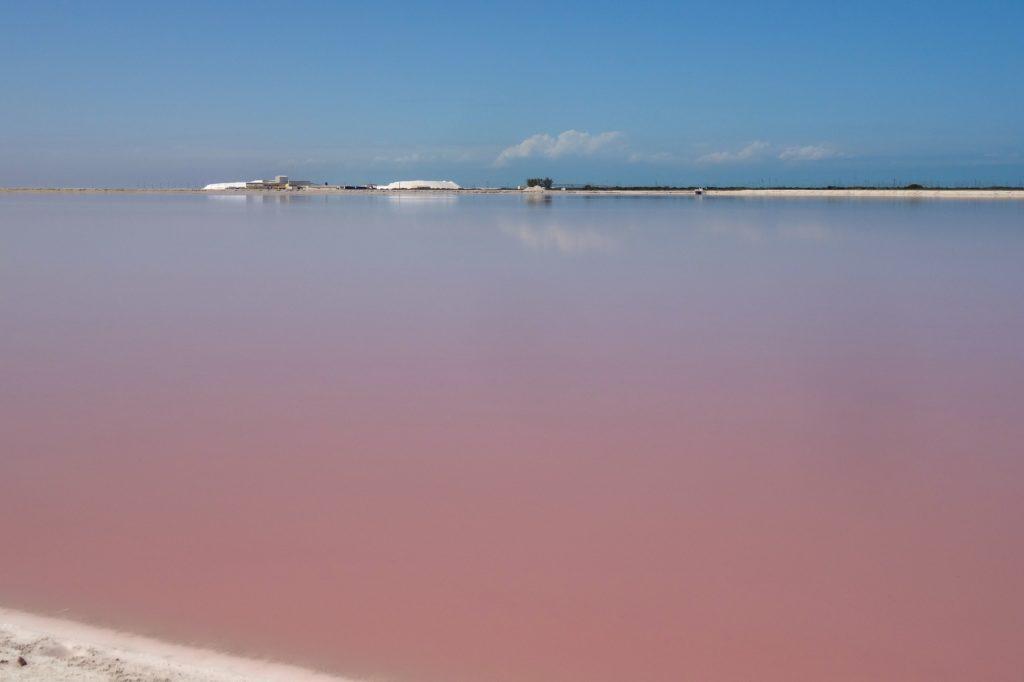 Pinkfarbenes Wasser und blauer Himmel, die Farben von Las Coloradas, Mexiko.