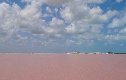 Las Coloradas, Mexiko. Pinkfarbener Salzsee.