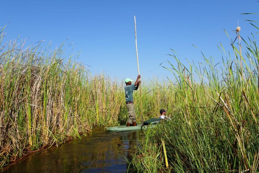 Okavango-Delta: Mit dem Mokoro unterwegs