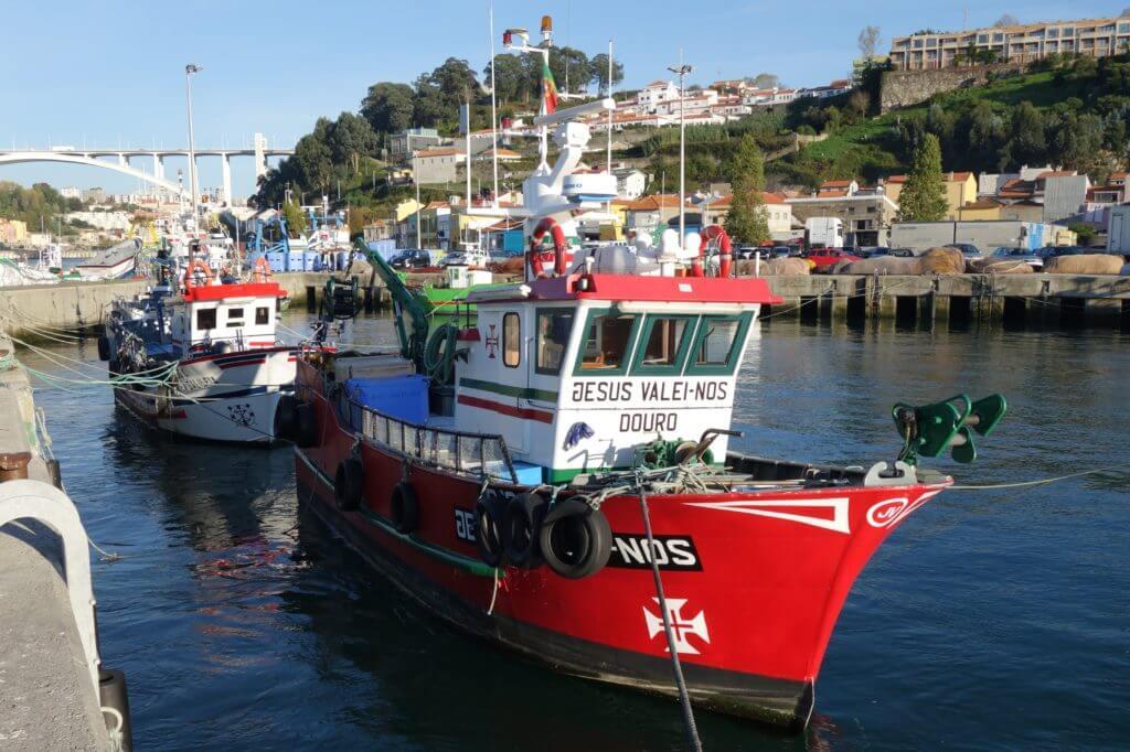 Der Hafen vom Fischerdorf Afurada