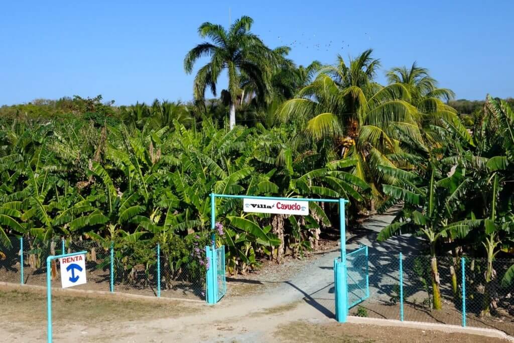 Villa Cayuelo in Guardalavaca zwischen Kokospalmen und Bananenstauden