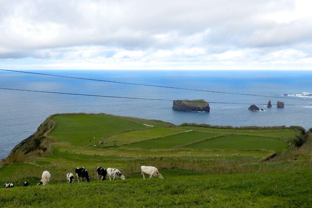 Küstenpanorama auf dem Weg von Mosteiros nach Sete Cidades.