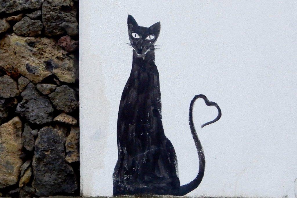 Street Art in Ponta Delgada, Azoreninsel São Miguel. Katzenmotiv.