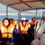 Whalewatching vor der Küste von Sao Miguel.