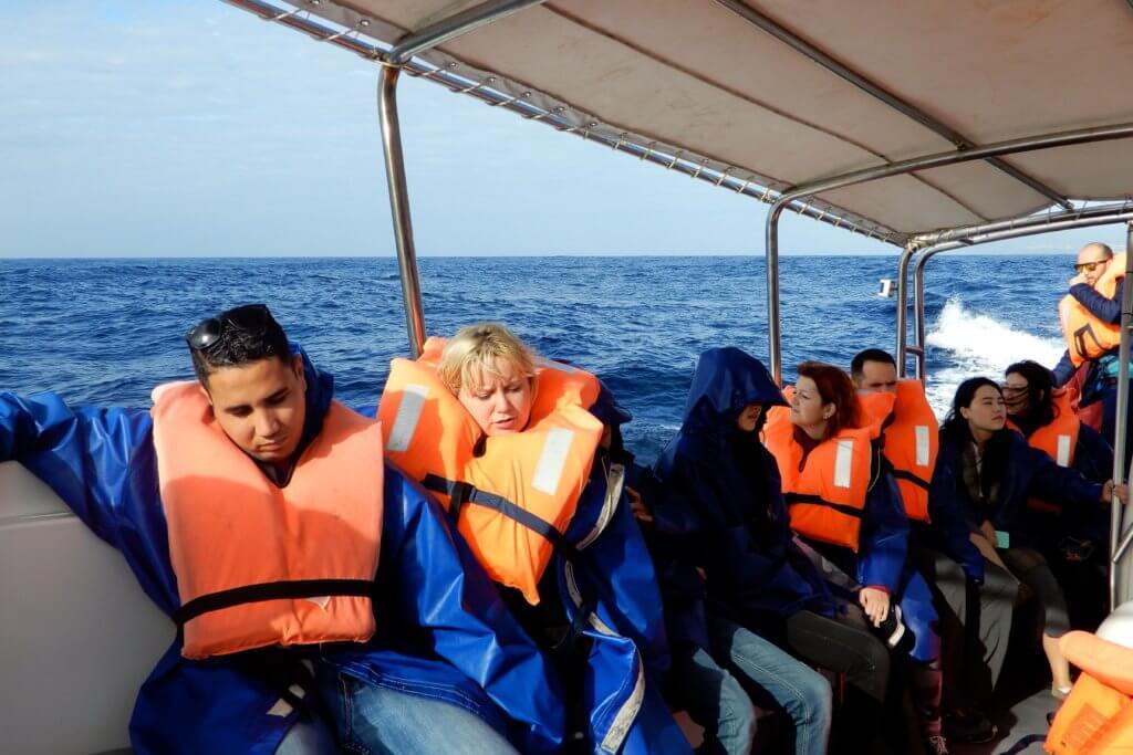 Whale Watching auf den Azoren. Auf dem Boot in den Gewässern vor der Küste von São Miguel.