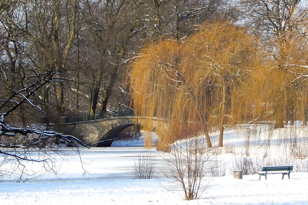 Winter in Hannover. Winterstimmung im Georgengarten.