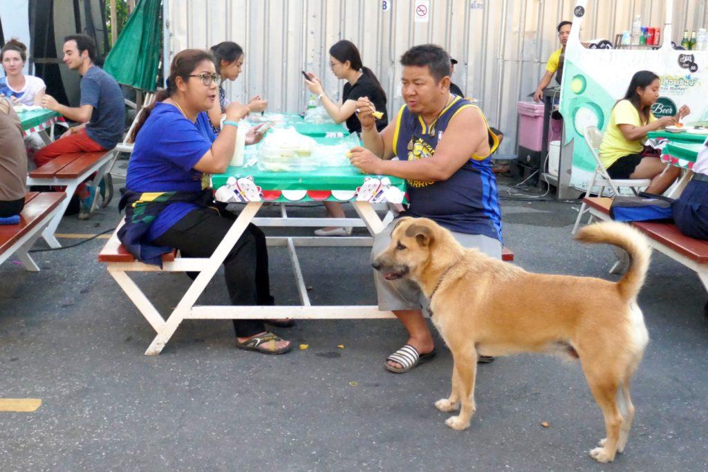 Indy Market in Phuket Town. Der Hund ist Stammgast.