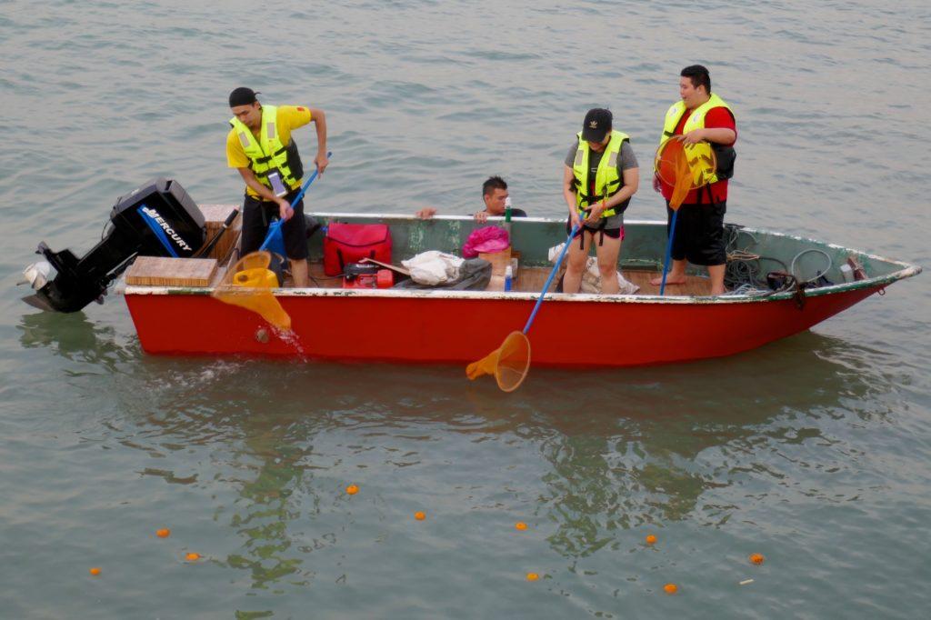 Chap Goh Meh, chinesischer Valentinstag in George Town, Malaysia. Fleißige Helfer fischen die danebengegangenen Orangen wieder aus dem Wasser