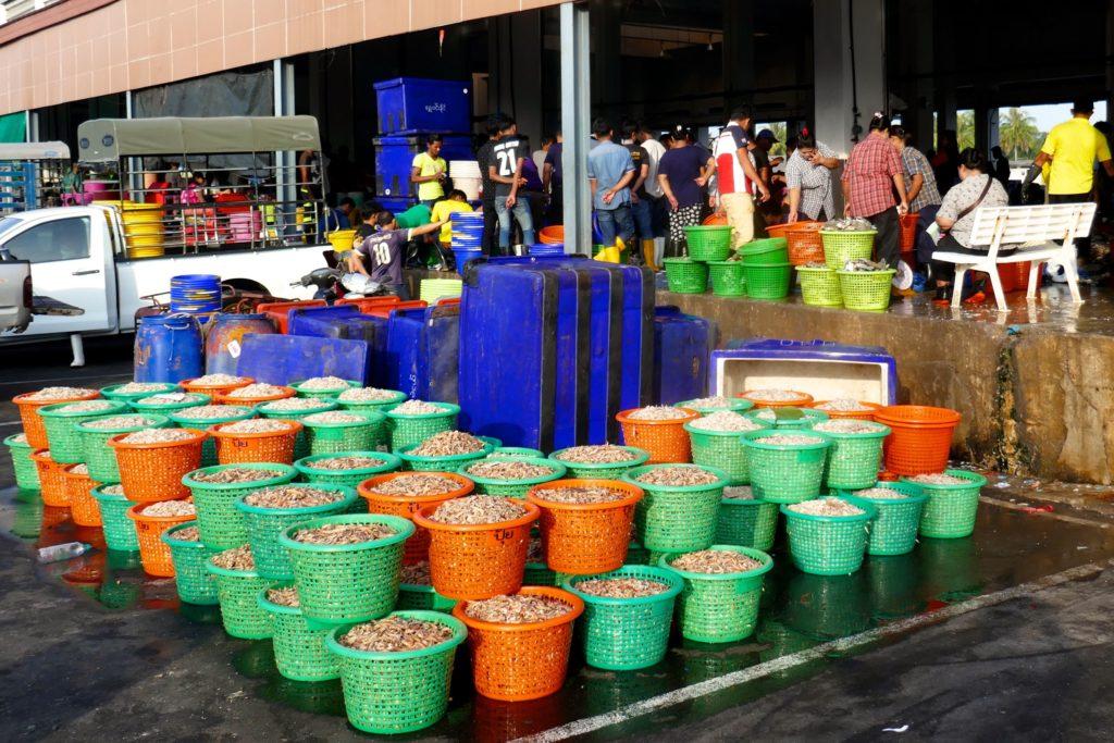 Fischmarkt von Ranong. Fisch und Meeresfrüchte in großen Mengen.