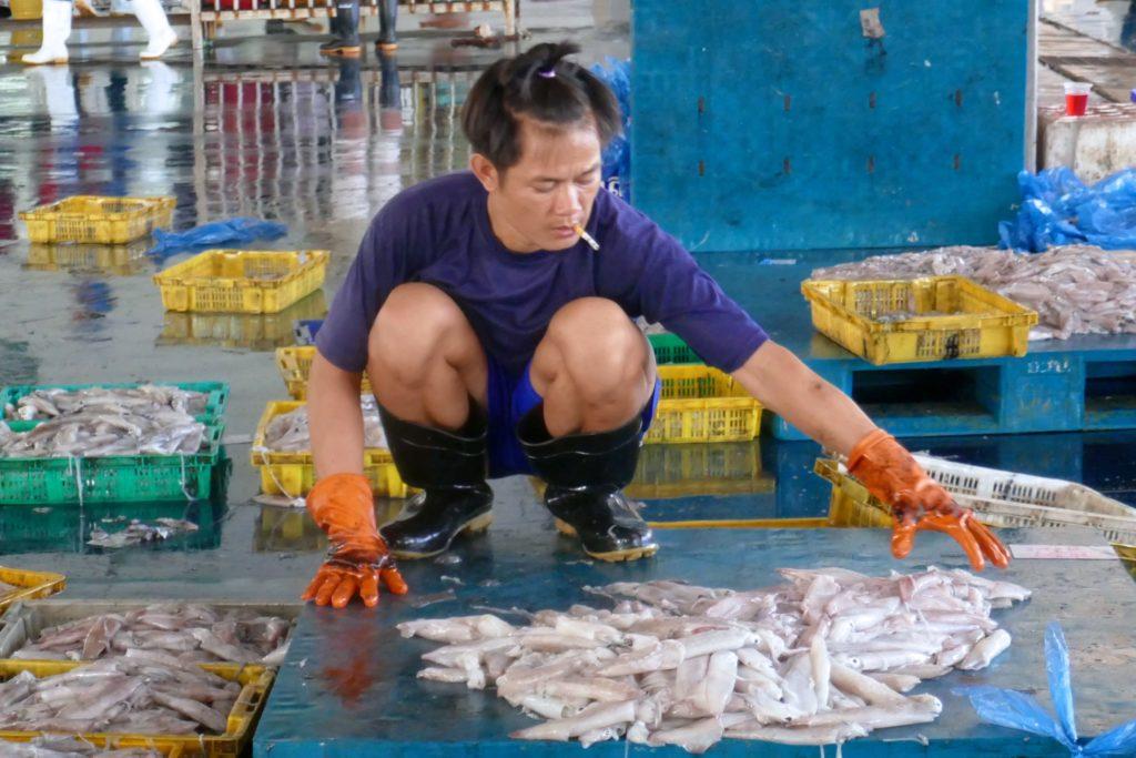 Menschen in Ranong. Auf dem Fischmarkt werden Fische sortiert.